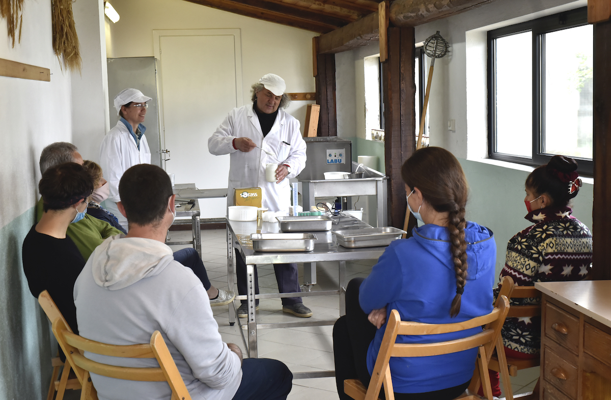 impariamo a fare il formaggio